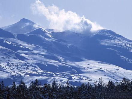 Обои Заснеженные горы, в низовьях которых виднеется густой лес