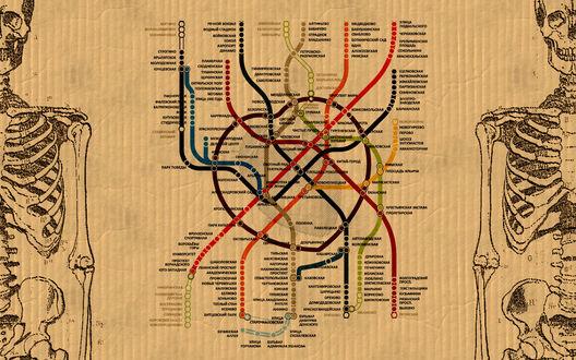 Обои карта метро в виде кровеносной системы человека