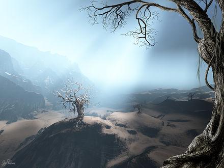 Обои Рассвет среди мёртвых деревьев (альтернативный мир)
