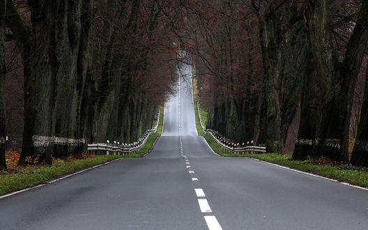 Обои Дорога уходящая вертикально вверх