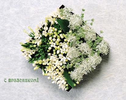 Обои Цветы к празднику (С праздником)