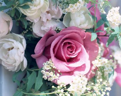Обои Букет из мелких цветочков и розовой розы