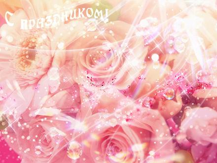 Обои Розы (С праздником!)