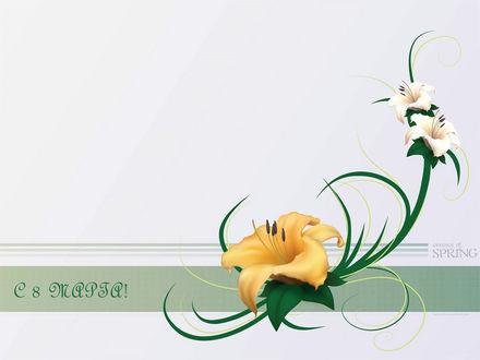 Обои Лилии (С 8 марта! essence of SPRING)