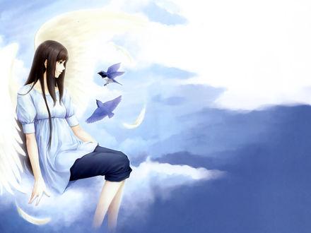 Обои Девушка-ангел сидит на облаке, около неё летают птички