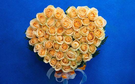 Обои Серце,выложенное из жёлтооранжевых роз