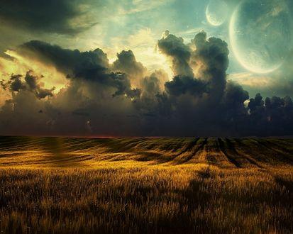 Обои Над красивым жёлтым полем сгущаются облака