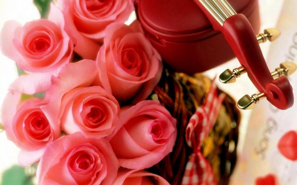 Обои для рабочего стола Нежные розы и скрипка