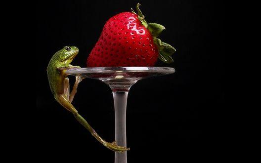Обои Лягушка упорно взбирается наверх, чтобы достать клубнику