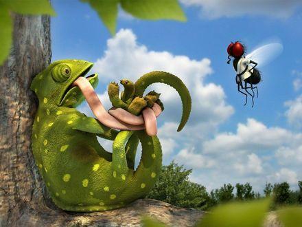 Обои Муха пленила хамелеона собственным языком