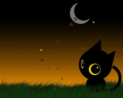 Обои Чёрныё кот под луной