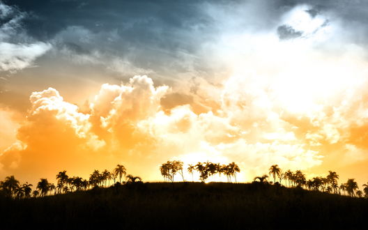 Обои Красивые золотые облака над тропиками
