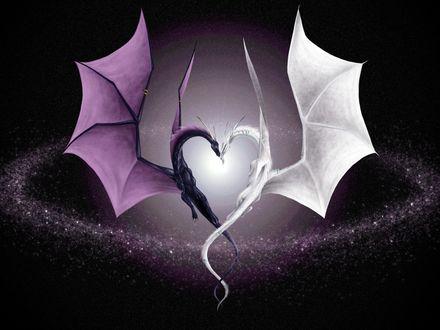 Обои влюбленные драконы