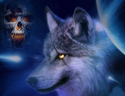 Обои Волк-оборотень