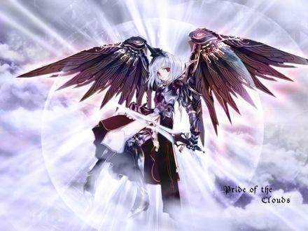 Обои Ангел с мечом (Pride of the clouds)