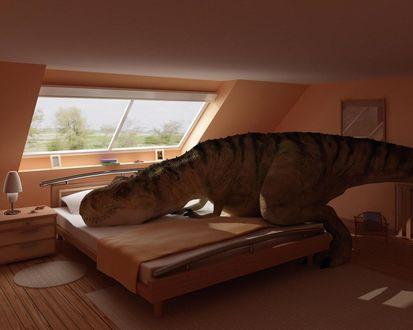 Обои Динозавр Рекс лежит на кровати
