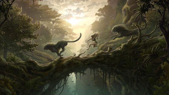 Обои Девушка бежит по лесу вместе с львами