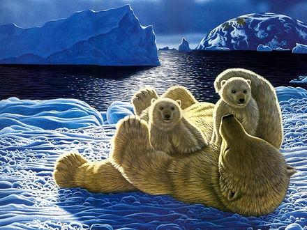 Обои Семья белых медведей