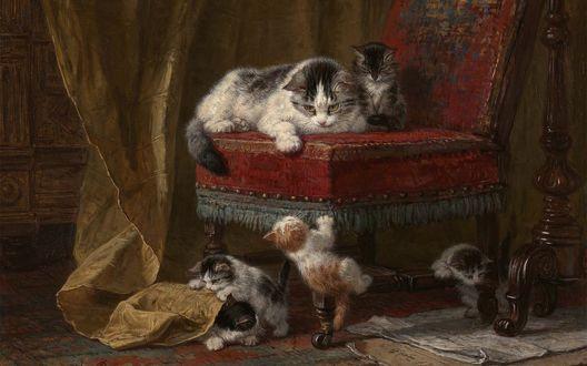 Обои За игривыми котятами наблюдает их мама