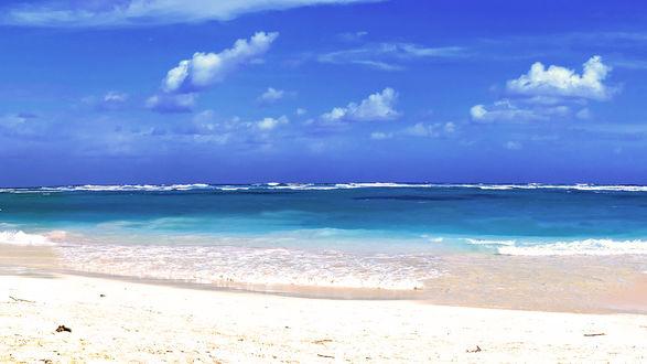 Обои Берег моря
