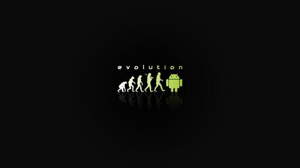 Обои Эволюция от шимпанзе к андройду (Evolution)