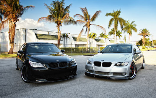 Обои Черная и серебряная тюниногованные BMW на фоне пальм