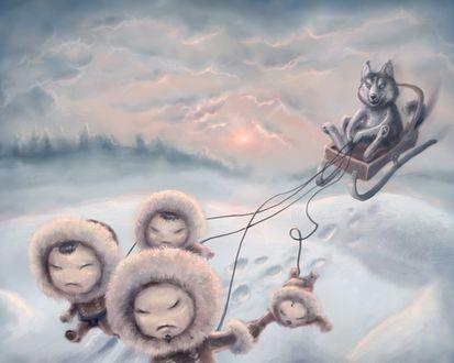 Обои чукчи в упряжке везут сидячего в нартах волка