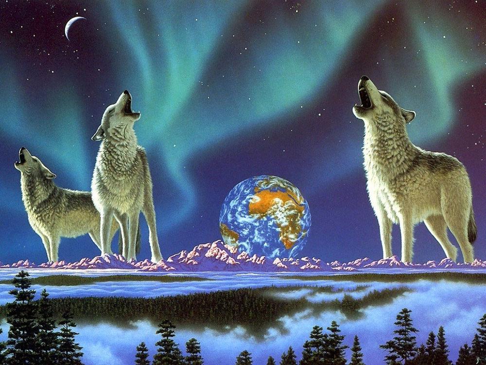 Обои для рабочего стола Волки, воющие на луну на фоне звёздного неба, планеты Земля