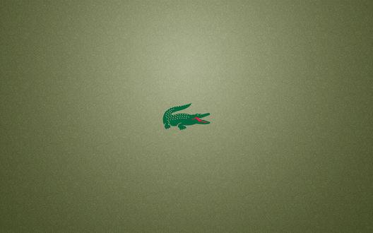 Обои Логотип - крокодил Лакост / Lacoste на фоне ячеистой текстуры