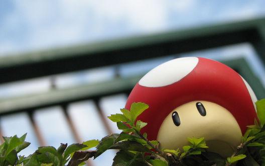 Обои Настоящий мухомор из серии игр про Марио / Mario