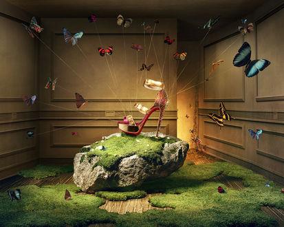 Обои Множество бабочек тянет за ниточки в разные стороны, пытаясь поднять туфельку, стоящую на камне посреди комнаты, в воздух
