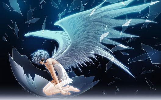 Обои Rei Ayanami / Рей Аянами из аниме Евангелион / Evangelion с крыльями ангела в разбитом шаре