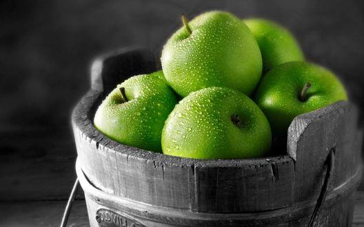 Обои Яблоки в деревянном ведре