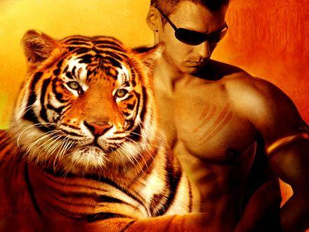 Обои Тигр и парень