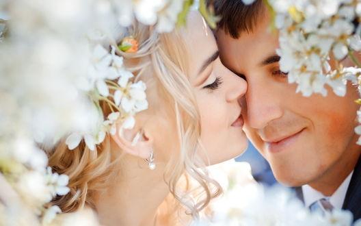 Обои Поцелуй невесты