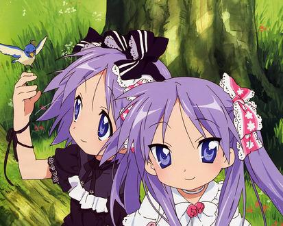 Обои Когами и Цукаса, аниме 'Лаки Стар' ('Счастливая звезда')