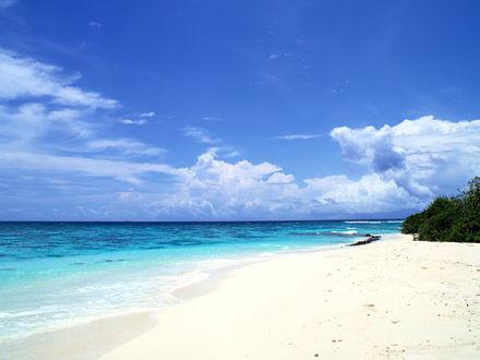 Обои Песчаный морской пляж