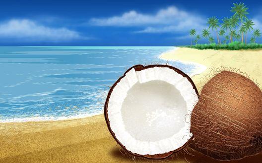 Обои Рисунок кокоса на морском побережье