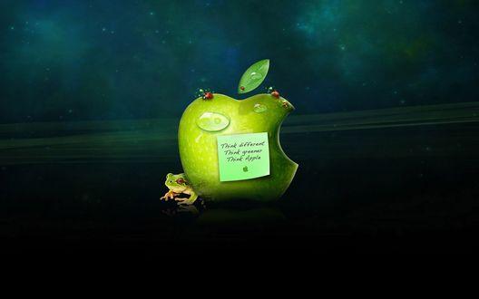 Обои Лягушка и надкусанное яблоко (Think different Think greener Think Apple) Эмблема эпл