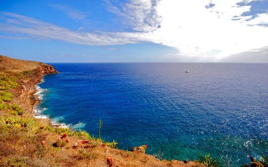 Обои Голубая вода на диком пляже