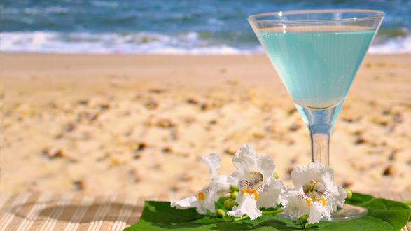 Обои Ирисы и голубой коктейль с оливками на пляже