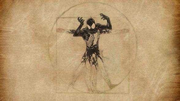 Обои Витрувианский человек-паук Леонардо да Винчи