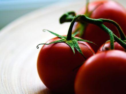 Обои Свежие помидорки