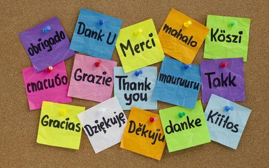 Обои Слова благодарности на разных языках (obrigado, Dank U, Merci, mahalo, K