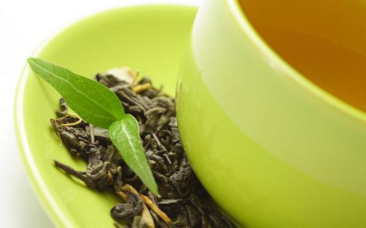 Обои Зеленый листок в блюдце рядом с засушенным чаем