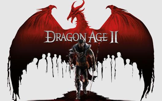 Обои Мужчина с посохом идет на фоне расправившего крылья дракона (Dragon Age II)