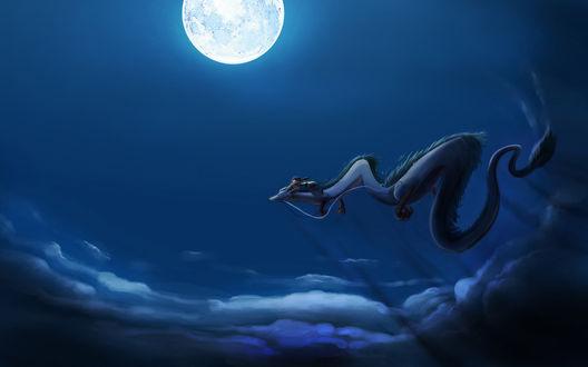 Обои Девочка из 'Унесённая призраками' летит на драконе