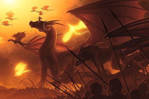 Обои Война людей и драконов и разных зверей