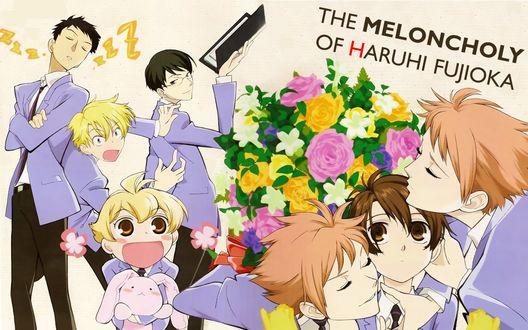 Обои The melacnholy of Haruhi Fujioka. Аниме 'Клуб свиданий старшей школы Оран'