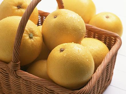 Обои Круглые желтые апельсины в корзинке